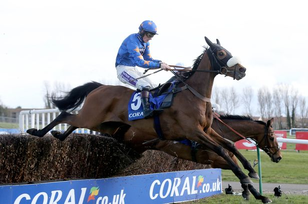 Vicente - Scottish Grand National Winner