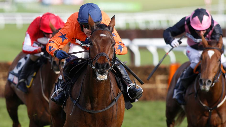 Moon Racer goes Champion Hurdling this Year