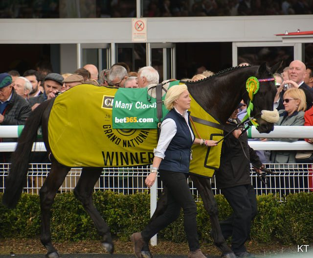 Grand National 2018 Preview
