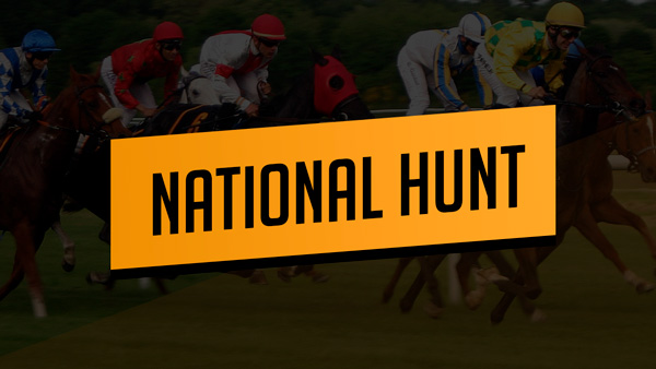 National Hunt packages are back!